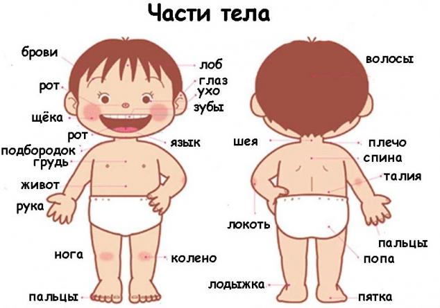 тема знакомство на английском для малышей