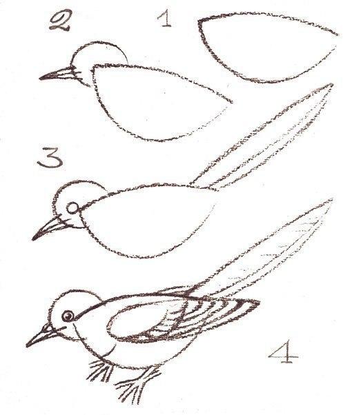 Учимся рисовать птиц