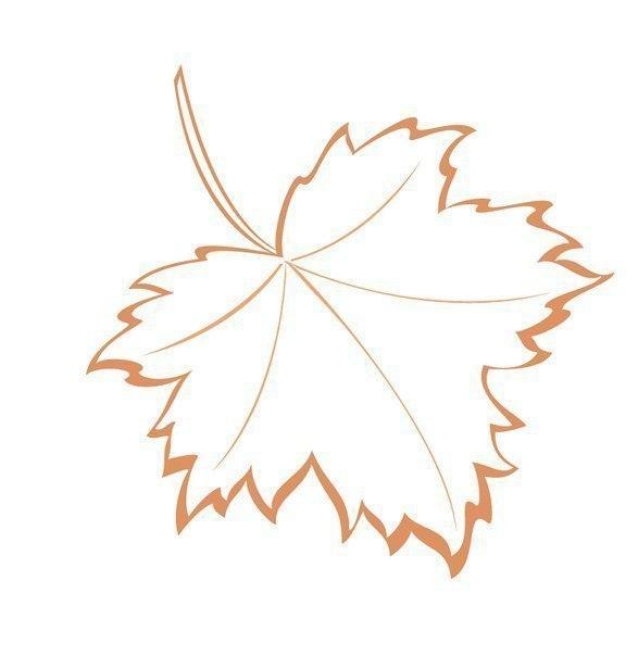 Красивые шаблоны осенних листьев для творчества