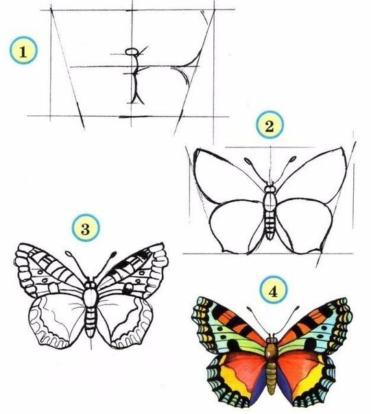 Учимся рисовать насекомых с детьми
