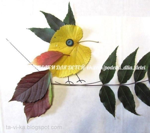 Чудеса из листьев