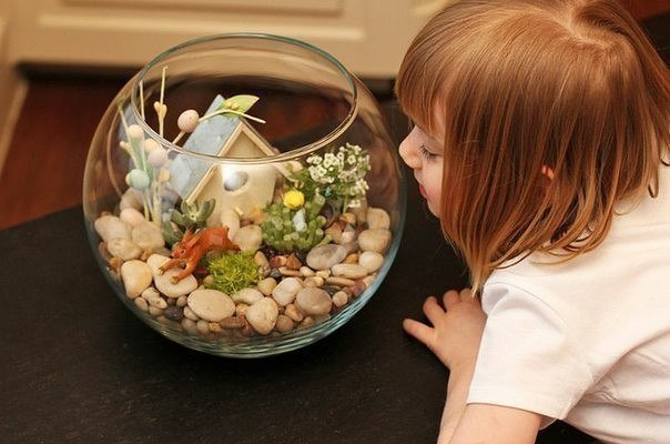 Создайте свой мини-сад вместе с детьми