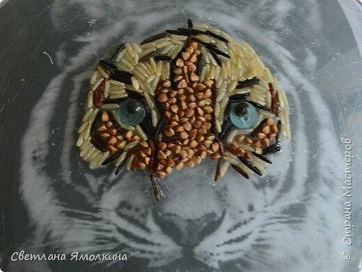 Тигрёнок из круп