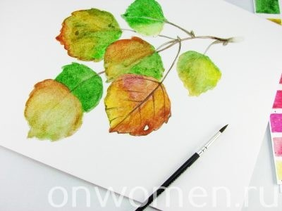 Осенние листья акварелью