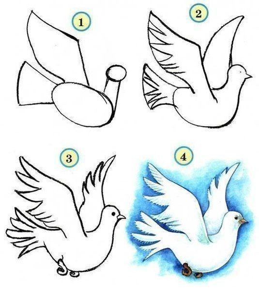 Учим детей рисовать птичек