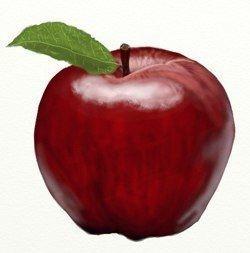 Учим детей рисовать правдоподобное яблоко