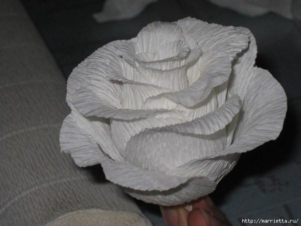 Роза из гофрированной бумаги: мастер-класс