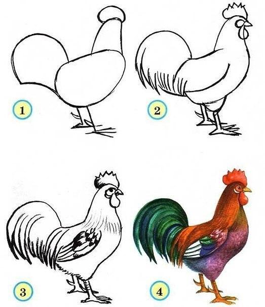 Рисуем птиц 6