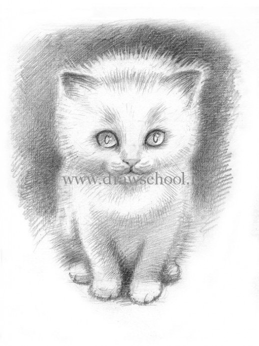 Рисуем простым карандашом милого котёнка 6