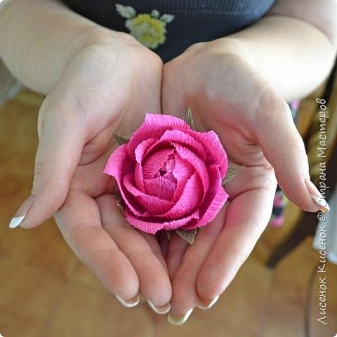 Роза из гофрированной бумаги: мастер-класс 8