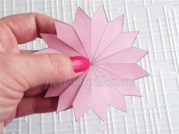 Цветы из бумаги: мастер-класс