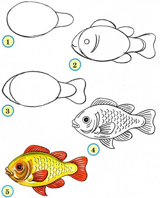Рисуем рыбок поэтапно