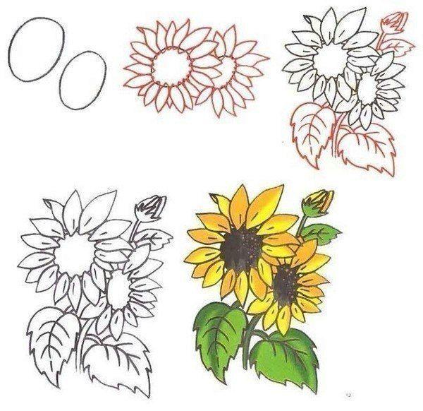 Рисуем цветы