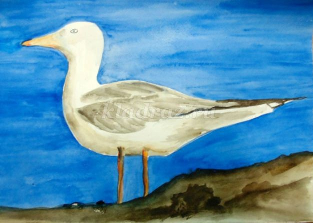 Рисуем с детьми чайку