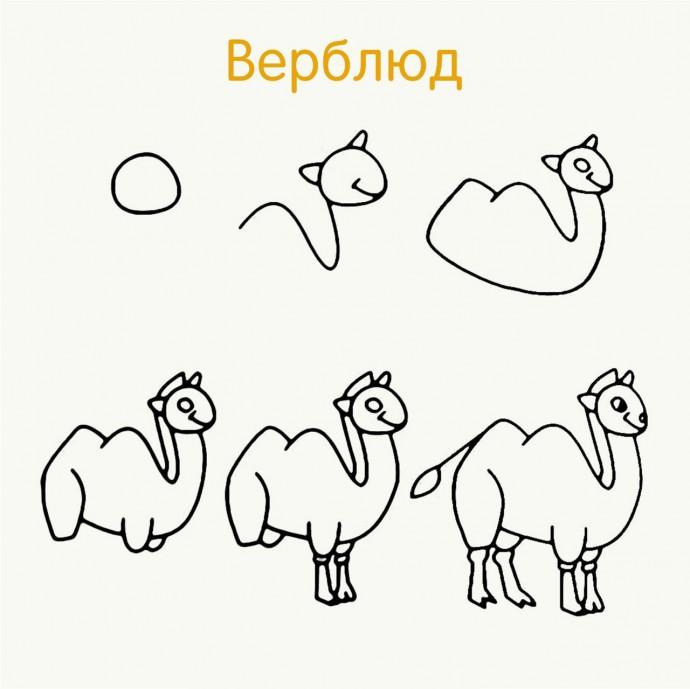 Рисуем с детками животных