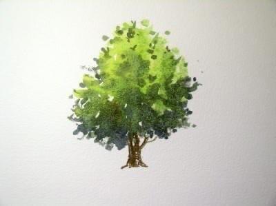 Рисуем дерево акварелью