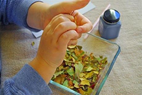 Аппликация из крошки сухих листьев