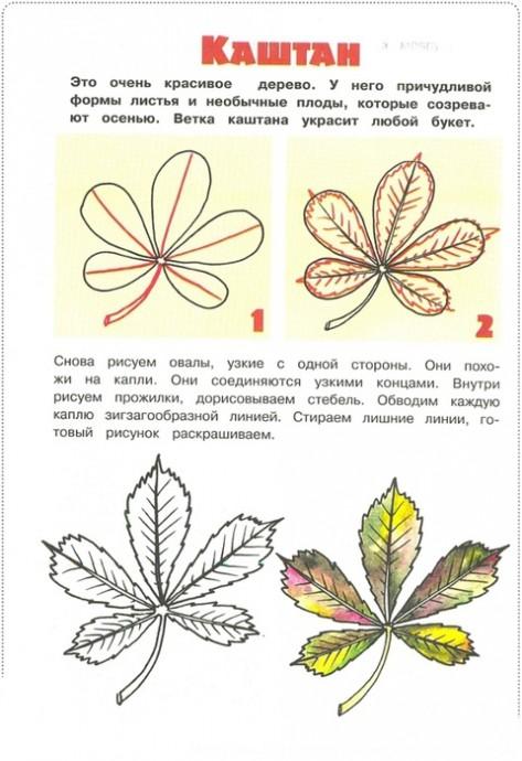 Уроки рисования: листья