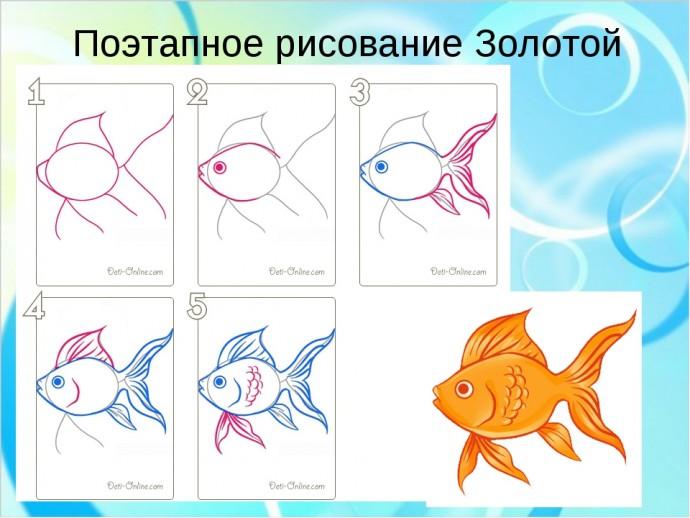 Рисуем с детьми разных рыбок