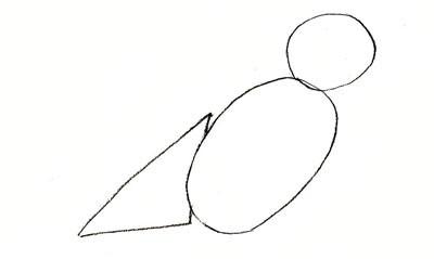 Рисуем воробья карандашом