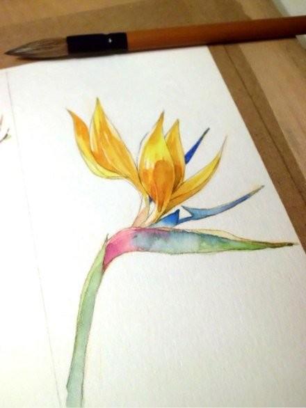 Рисуем с детьми магнолию