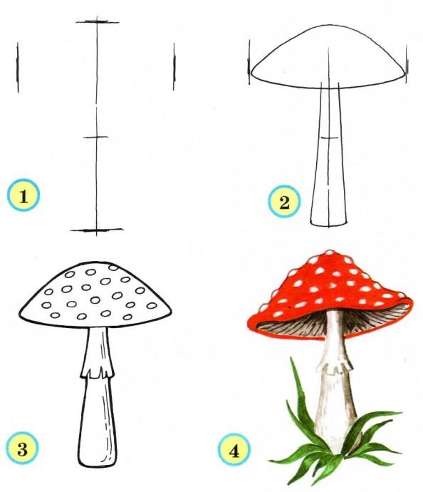 Рисуем с детьми грибы
