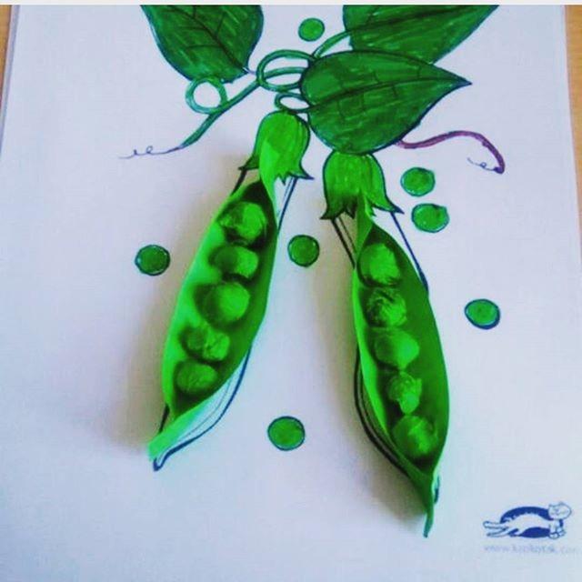 Стручок зелёного гороха