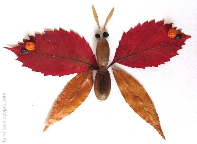 Бабочки из разноцветных листьев