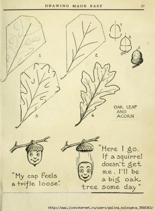 Рисуем цветы и листья