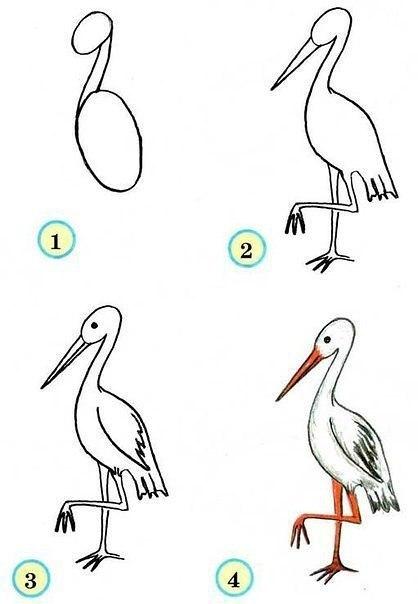 Рисуем птиц 4