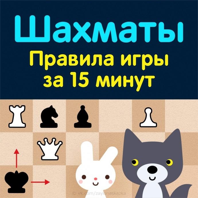 Правила игры в шахматы для детей за 15 минут