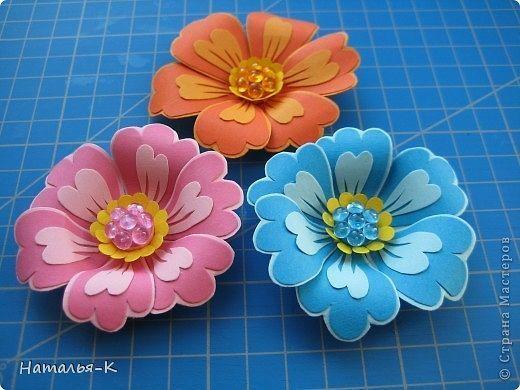Очень красивые цветы 9