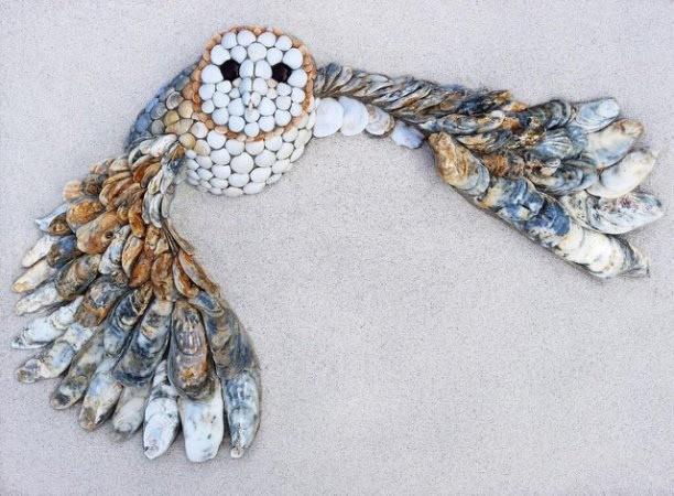 Коллажи из морских ракушек: идеи для детского творчества