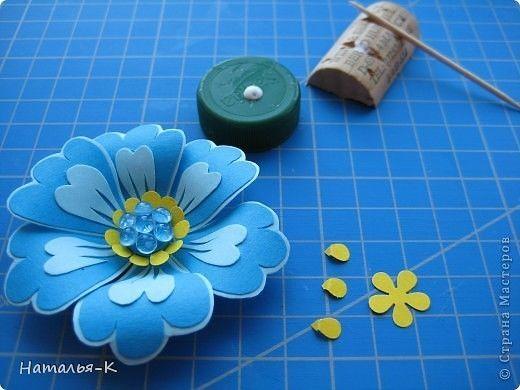 Очень красивые цветы 8