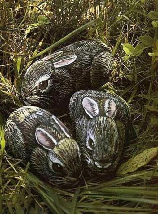 Рисуем с детьми кроликов на камнях