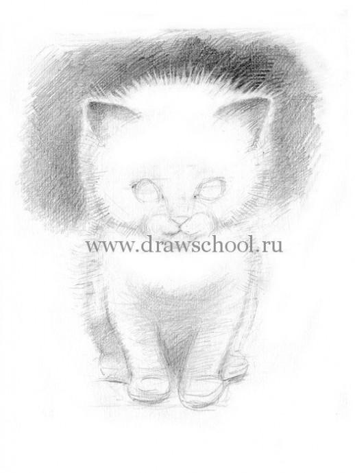 Рисуем простым карандашом милого котёнка 5