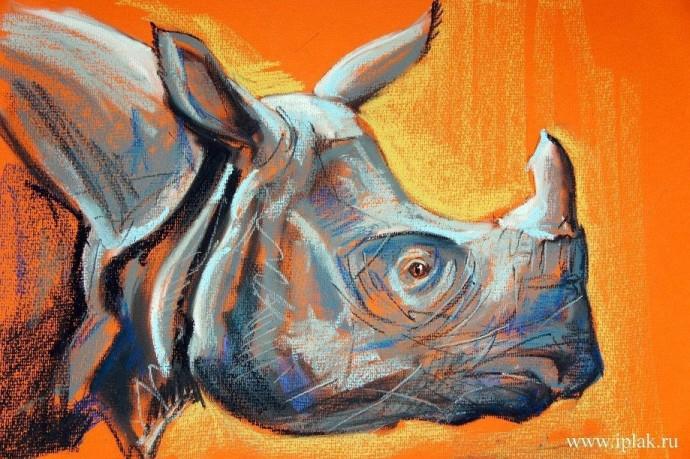 Рисуем с детьми носорога