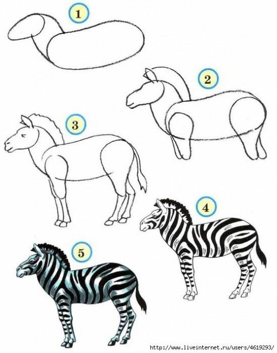 Рисуем с детьми самых разных зверушек