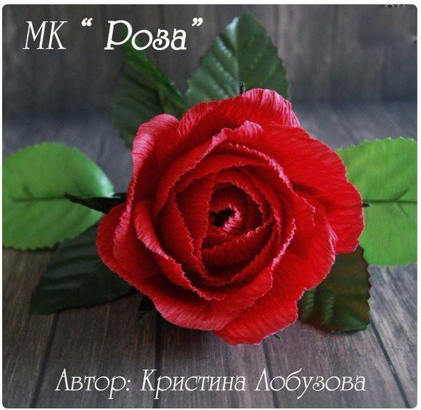 Роза из гофробумаги