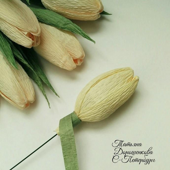 Мастер-класс по изготовлению тюльпанов из гофрированной бумаги