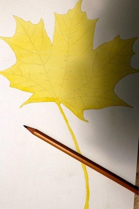 Как нарисовать с детьми осенний лист