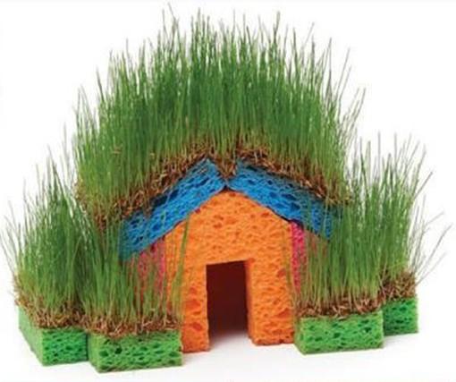 Домик с зеленью из хозяйственных губок