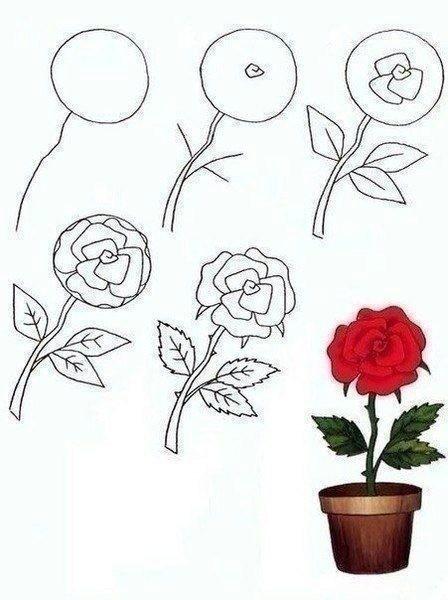 Учим детей рисовать разные цветы