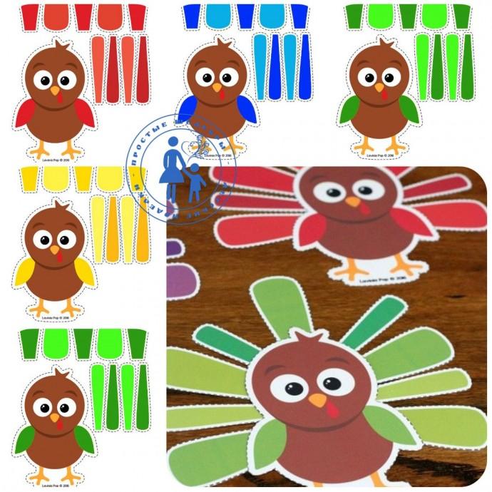 Варианты разных птичек по одному шаблону