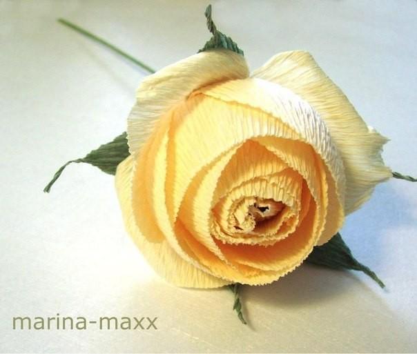 Роза из гофрированой бумаги