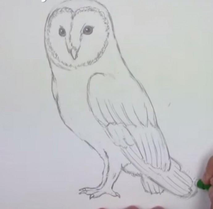 Рисуем с детьми сову