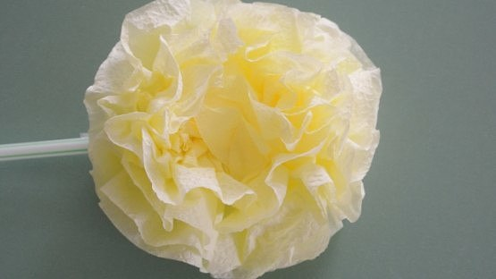 Пышные цветы из салфеток