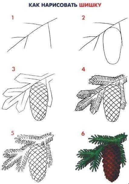 Пошаговые уроки рисования растений