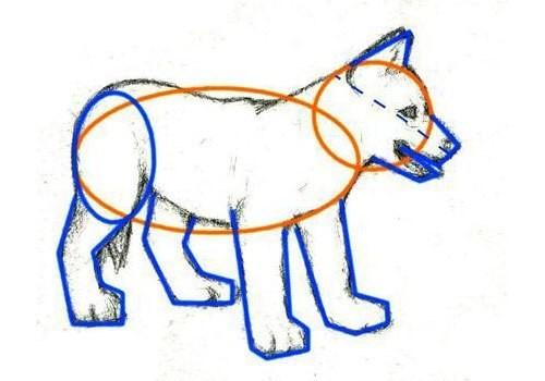 Рисуем щенка