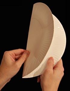 Ежик из бумажной тарелки